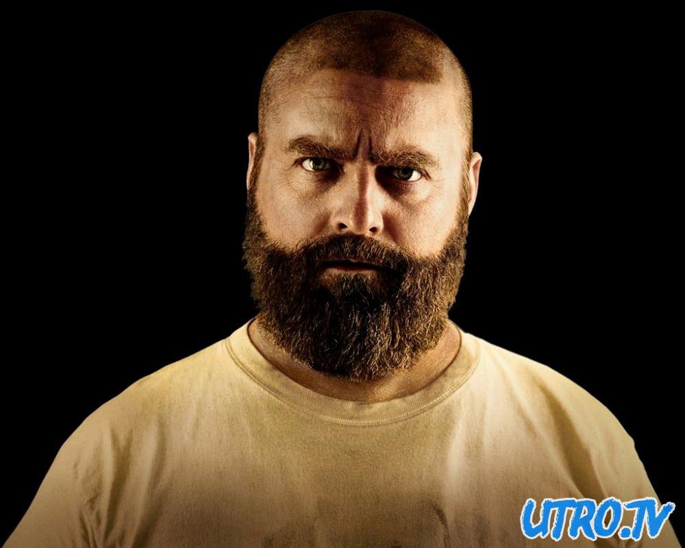 Как подобрать бороду под тип лица. Формы бороды для треугольного ...   800x1000