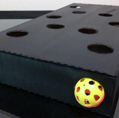 cat's box