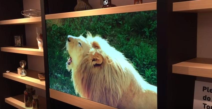Скоро такие прозрачные телевизоры будут в каждом доме
