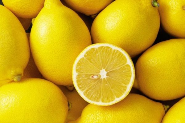 citrus-limon-001s