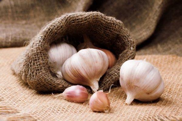 Garlic-WBC