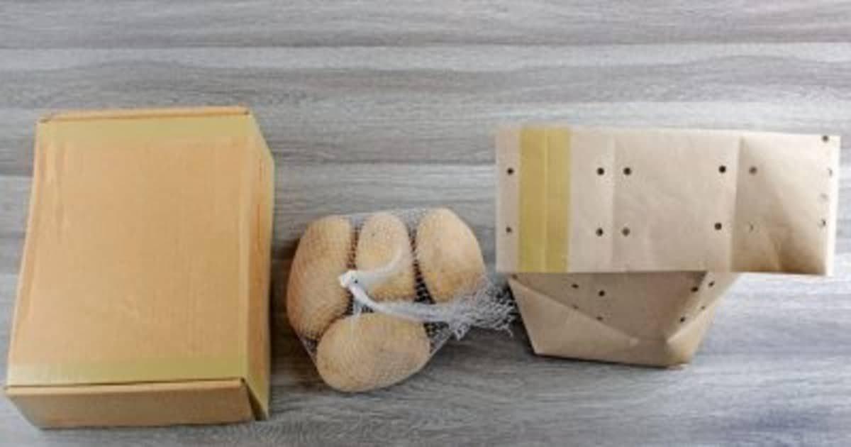 Сохраняем картофель свежим надолго: советы и лайфхаки