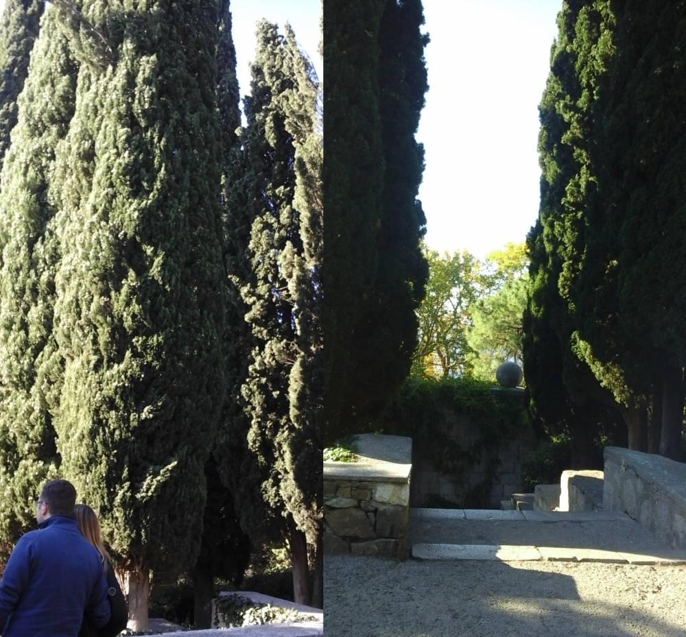 19 progulka po parku vorontsovskogo dvortsa v alupke