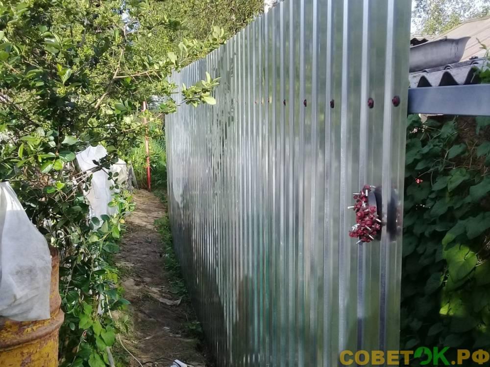 готовый забор из профнастила на х-кронштейнах