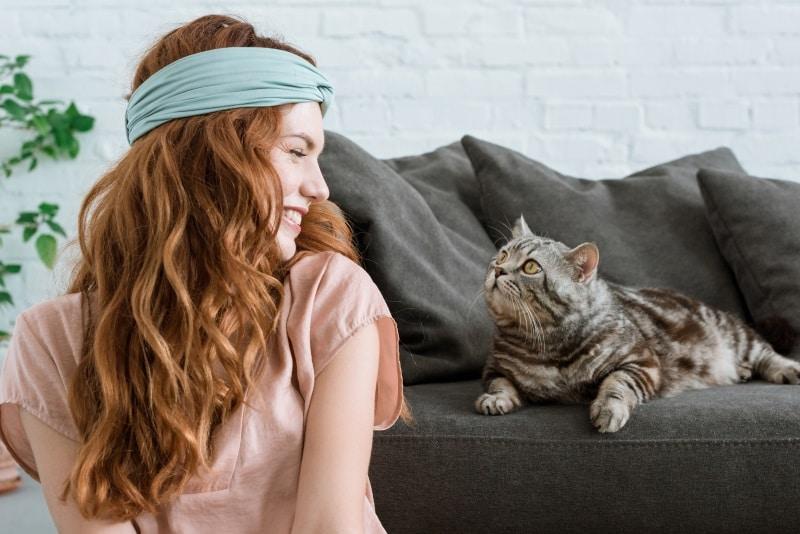 лайфхаки для котов