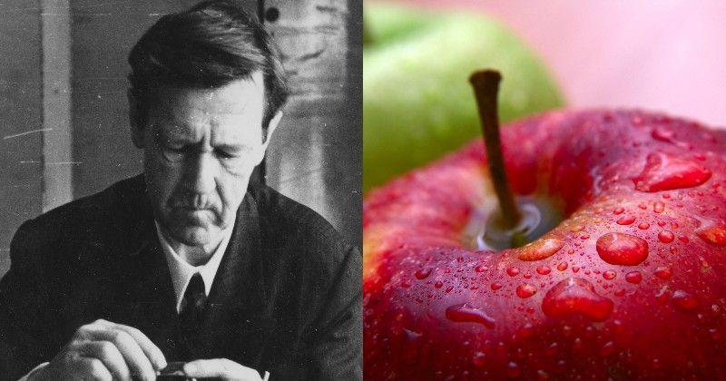 молодильное яблоко значение
