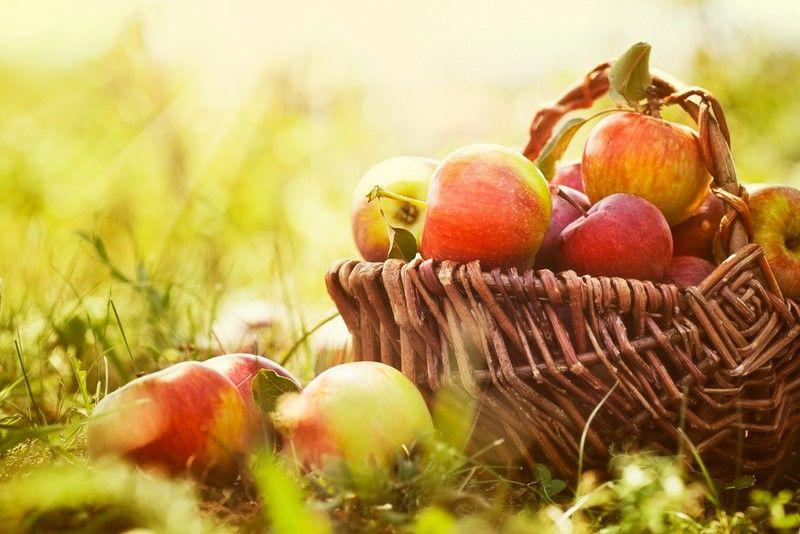 яблочный спас в церкви