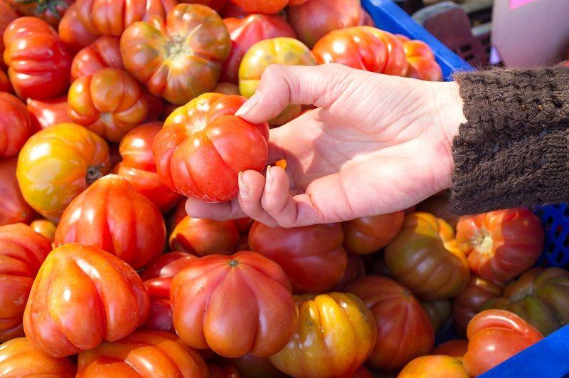 самые вкусные томаты черри