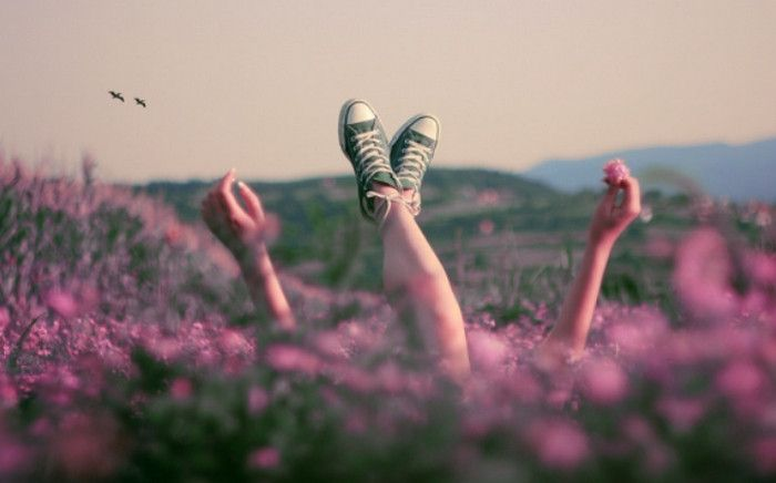 лежит в поле с цветами