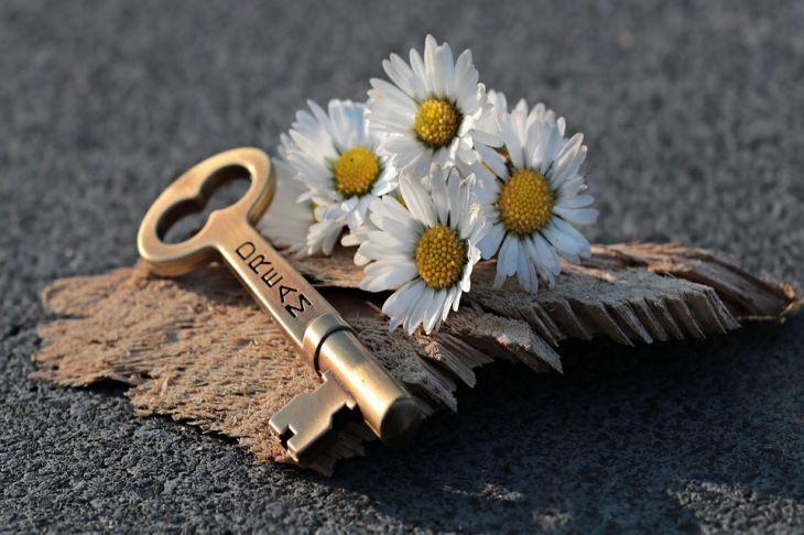 4 правила, которые помогут исполниться заветной мечте